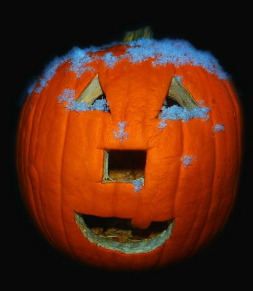 pumpkin jack o lantern jack-o-lantern