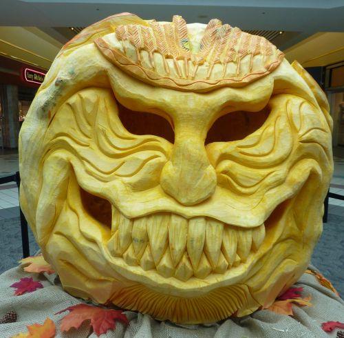 pumpkin autumn october
