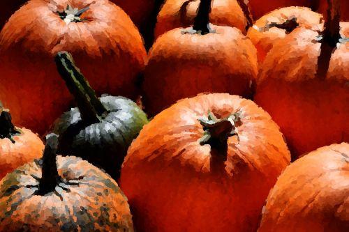 pumpkin impressionistic orange