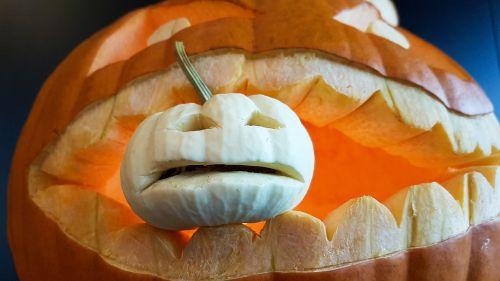 pumpkin halloween halloweenkuerbis