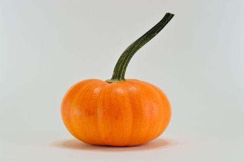 pumpkin orange season