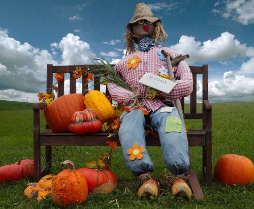 pumpkin woman of straw doll