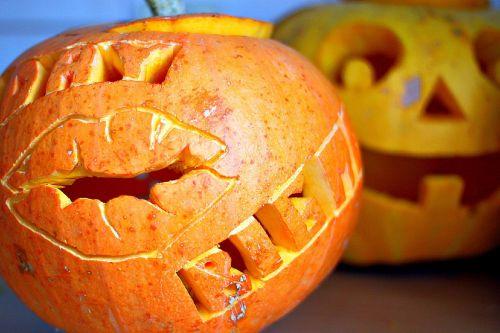 pumpkin halloween cutting