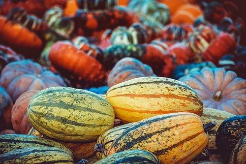 pumpkin  autumn  autumn decoration