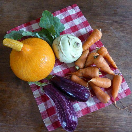 pumpkin carrots eggplant