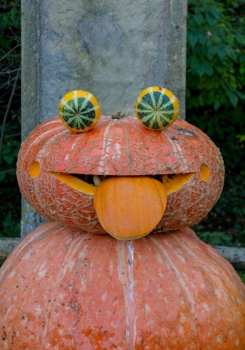pumpkin face autumn
