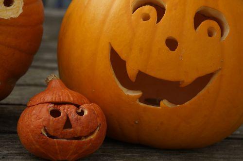 pumpkin pumpkin face halloween