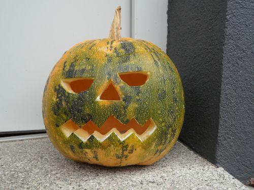 pumpkin halloween fash