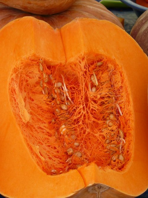 pumpkin sliced pulp