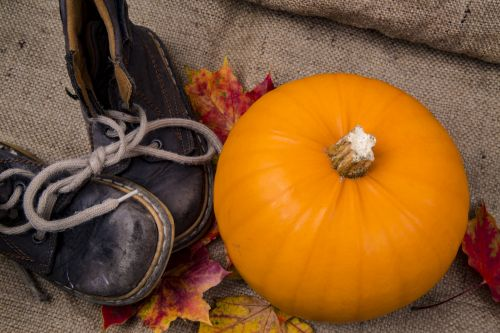 Pumpkin On The Jute Background
