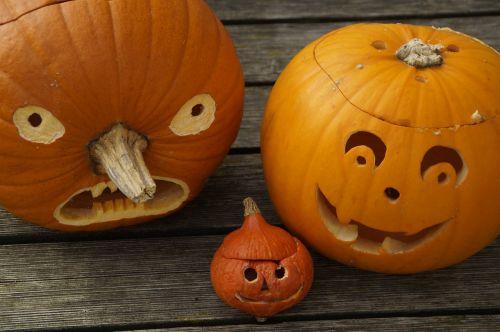 pumpkins three halloween