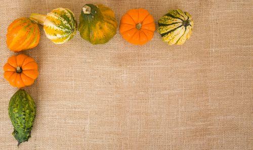 Pumpkins Corner