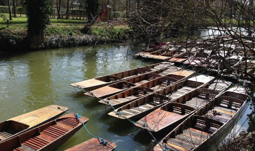 punts,punting,oxford,river,thames,boat