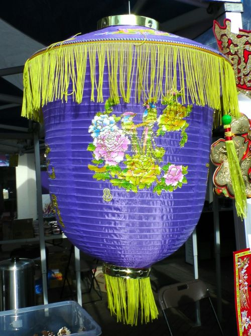 Purple Chinese Lantern