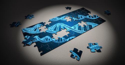puzzle dna research
