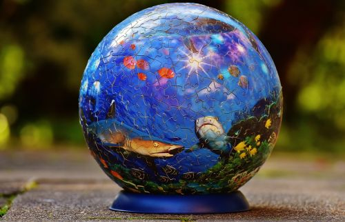 puzzle ball underwater world fish