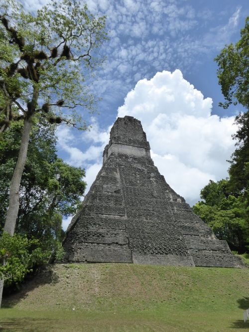 pyramid maya tikal