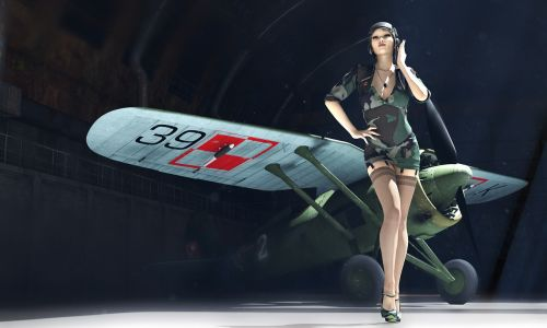 pzl p11 pin-up 3d model