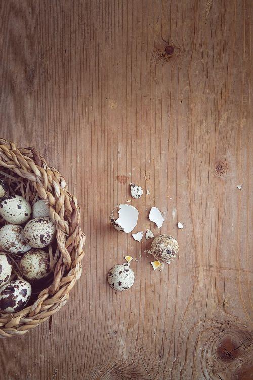putpelės,kiaušinis,maži kiaušiniai,sunaikintas,krepšelis,Velykos,mediena,Uždaryti,teksto laisvė,neigiama erdvė
