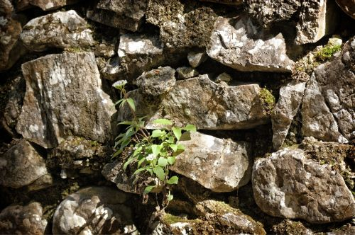 quarry stone wall texture