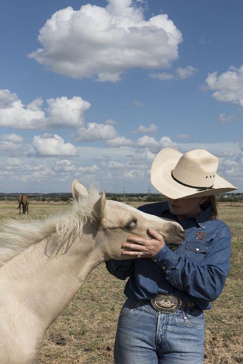 quarter horse colt cowgirl