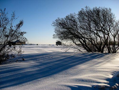 québec plains of abraham snowy landscape