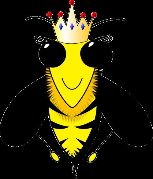 queen bee bee beehive