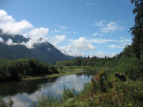 quinault river park