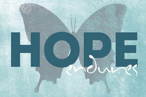 quotes hope endures