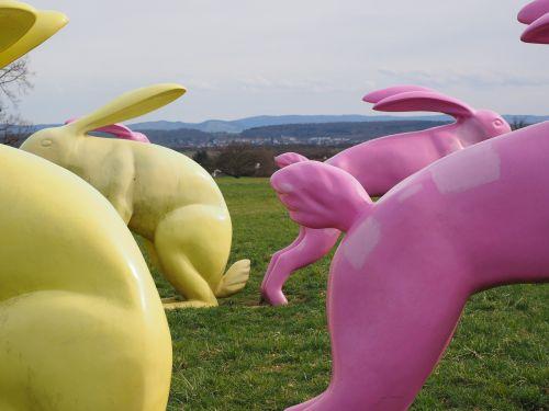 rabbit bunny butt butt