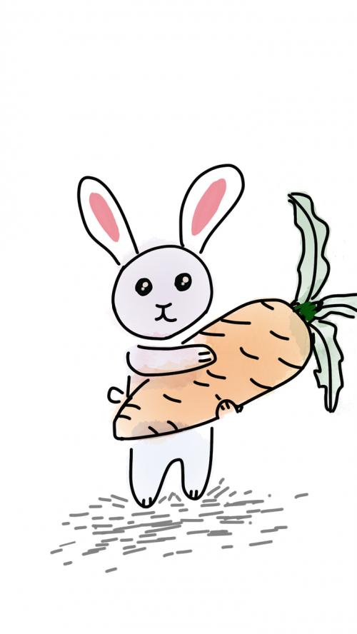 rabbit carrot big carrot