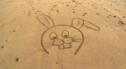 rabbit cartoon beach
