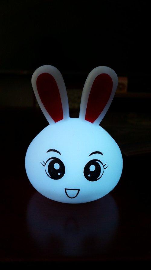 rabbit  lighting  toy