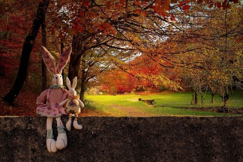 rabbits wall autumn