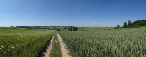 racławice poland landscape