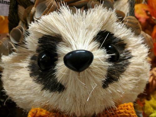 Raccoon Decoration