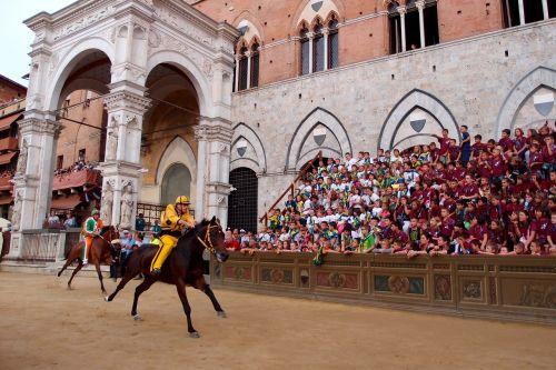 races horse sienna
