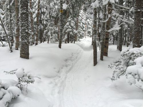 racket snow winter