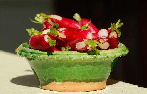 radish vegetables garden