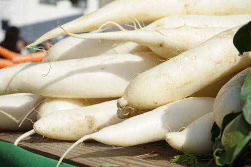 radishes raphanus white