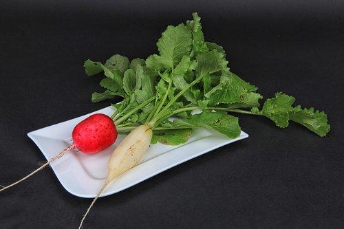 radishes  harvest  vegetables