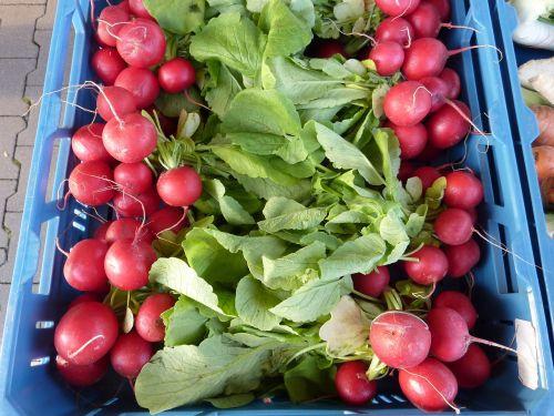radishes vegetables market