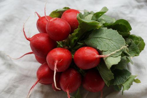 radishes red vegetables
