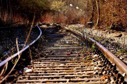 rails  old railroad tracks  lost places