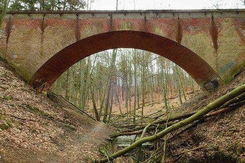 railway bridge  forest  torrent