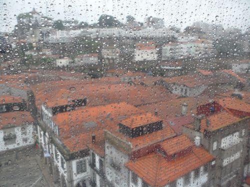 rain drops water