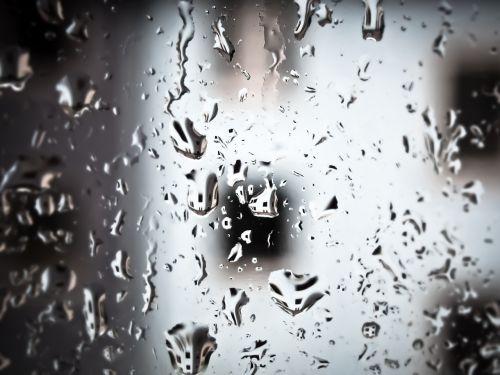 rain raindrop drop of water
