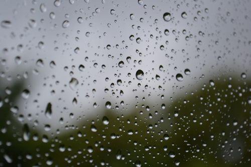 rain raindrops drops
