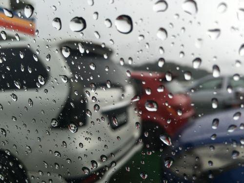 rain raindrop droplet