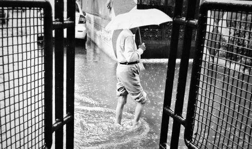 rain rain drop after rain